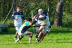 rugby blog